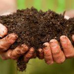 Green Economy: 26 decreti ancora non emanati dal Governo, interrogazione del M5S
