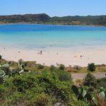 Ambiente, M5S: con 85 mln per Aree Protette rafforziamo azione contro cambiamento climatico